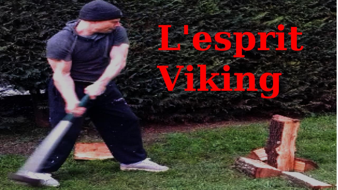 L'esprit Viking
