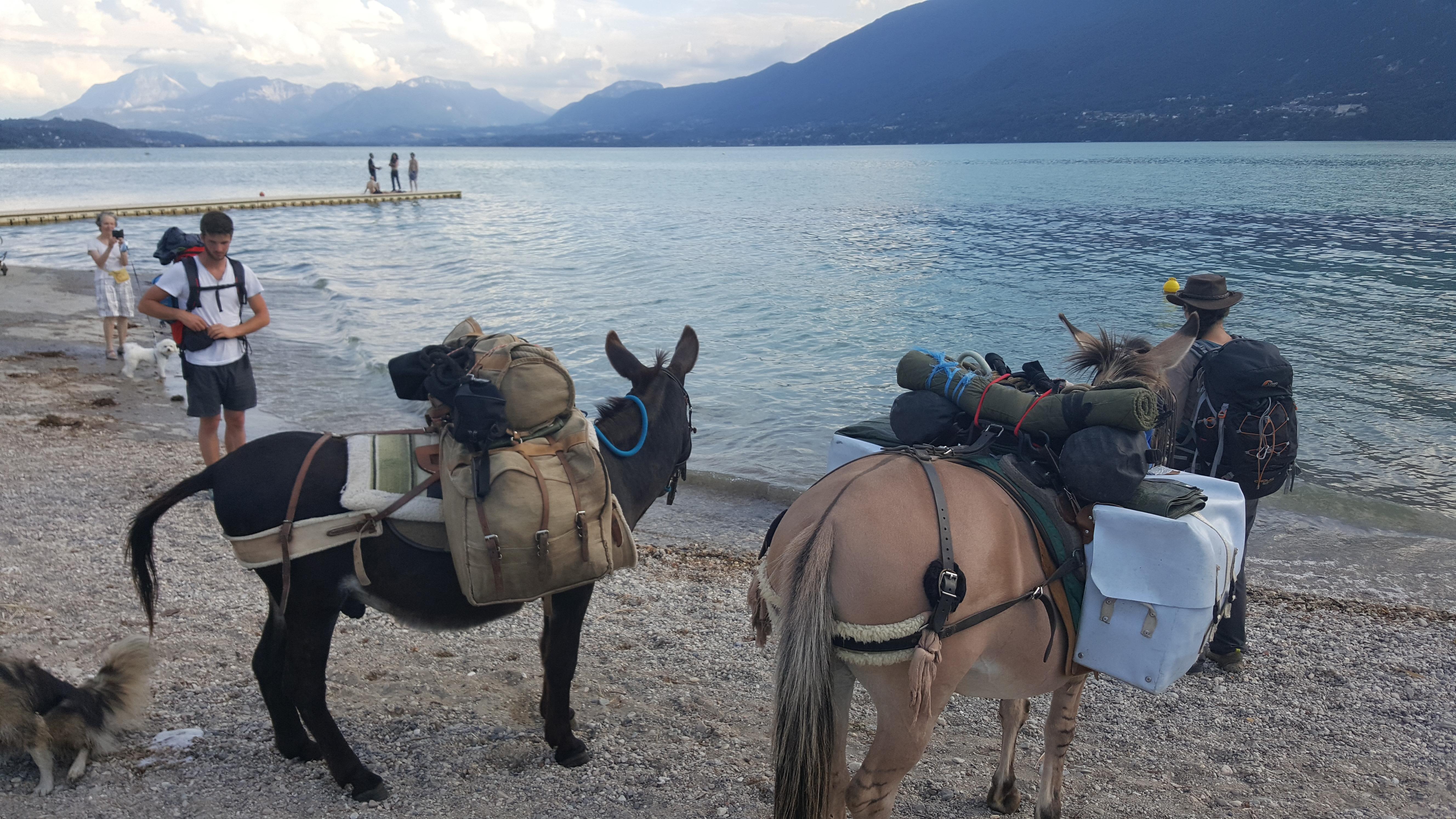 Devant le lac du Bourget