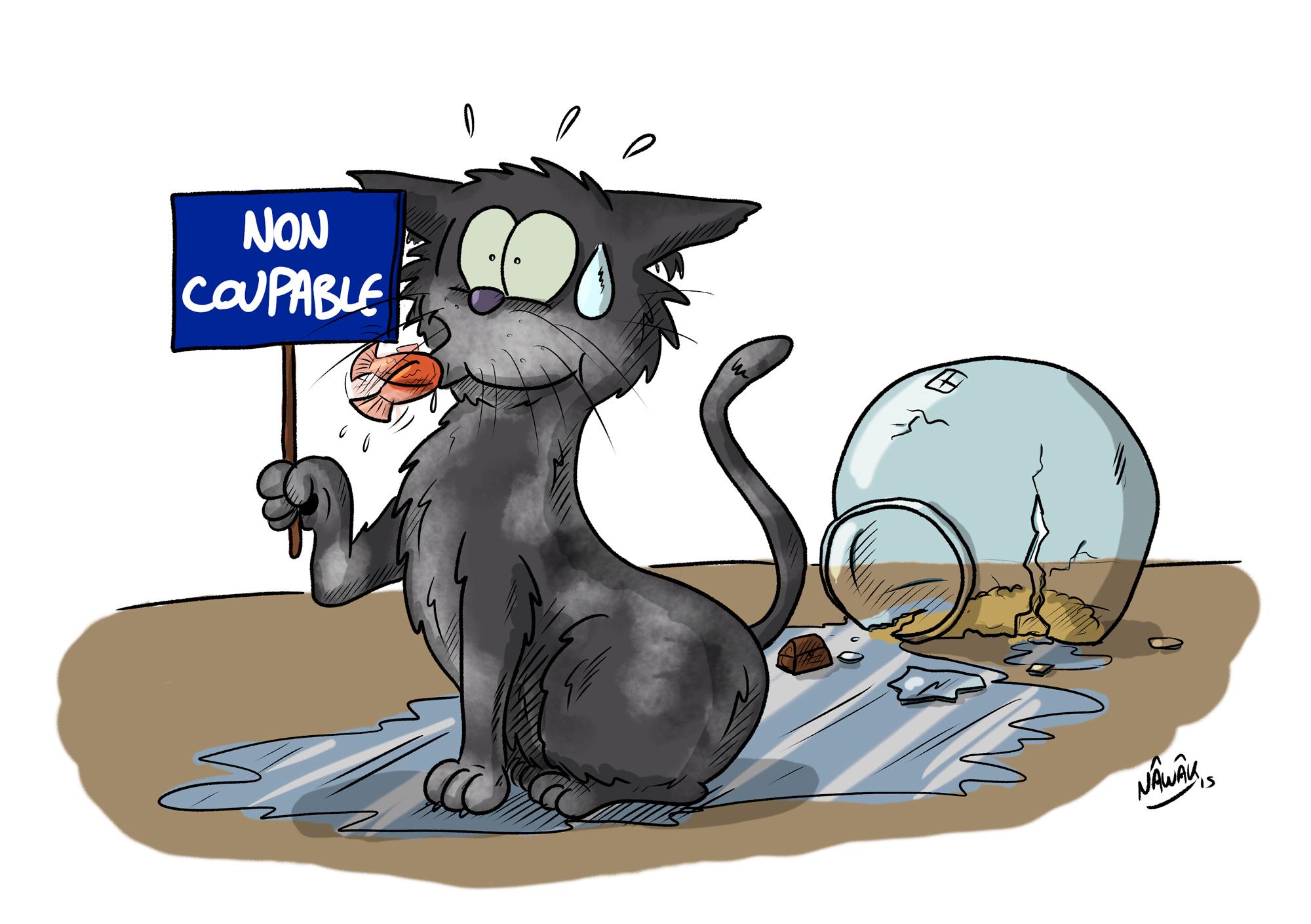 Non coupable !