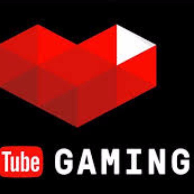 Streamer Gamer Délire pc