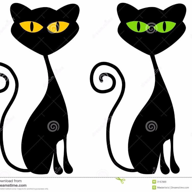 Le Chat Pistache