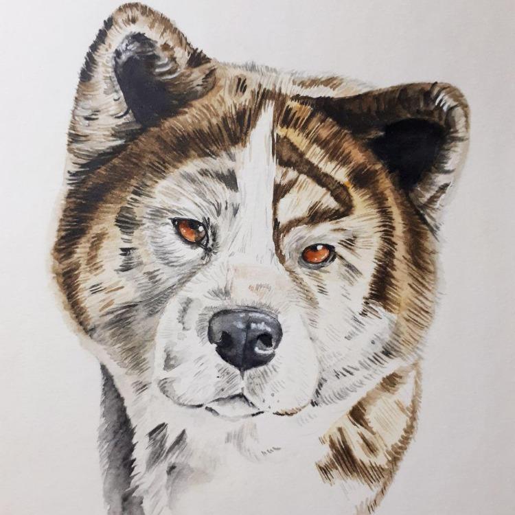 Nekos Pencil Art