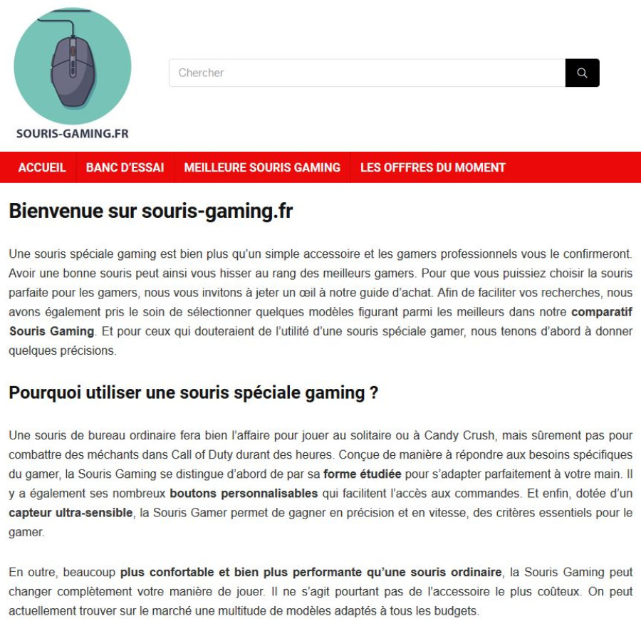 souris-gaming-aide