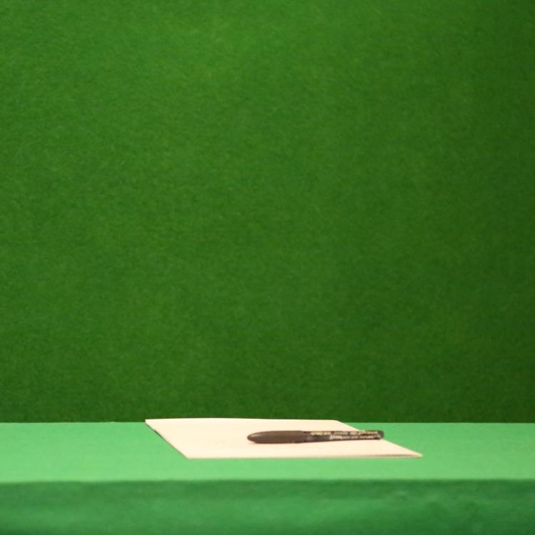 patrick le vert