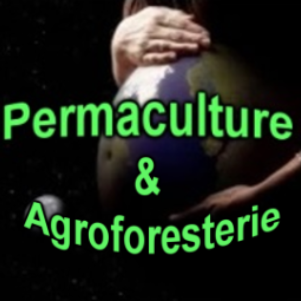 Permaculture & Agroforesterie Micro Ferme Permaforet Cher